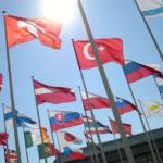 Legalización de Documentos: Auténtica y Apostilla